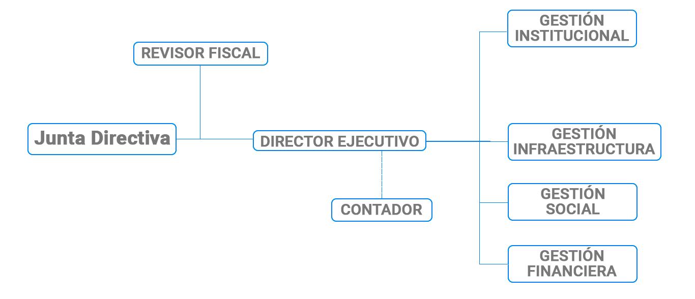 Junta-Directiva